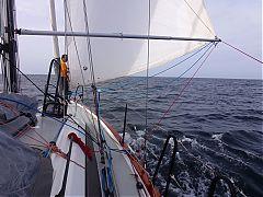 image 20171109_010_Atlantique_entre_Las_Palmas_Mindelo_dauphins.JPG
